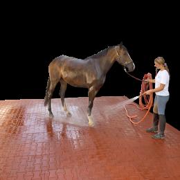 stallmatten pferde eva boxenmatten g nstig gummimatten pferdestall paddockmatten hofmeister. Black Bedroom Furniture Sets. Home Design Ideas